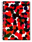 Abstractionism Spiral Notebook