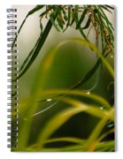Acacia Water Drops Spiral Notebook