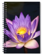Accents On A Purple Waterlily... Spiral Notebook