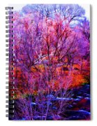 Acid By The Creek Spiral Notebook