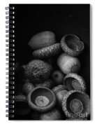 Acorns Black And White Spiral Notebook