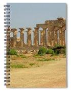 Acropolis Of Selinunte Spiral Notebook