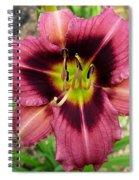 Addie Branch Smith Daylily Spiral Notebook