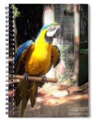 Adopted Macaw - Rescued Parrot Spiral Notebook