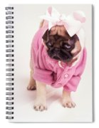 Adorable Pug Puppy In Pink Bow And Sweater Spiral Notebook