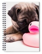 Adorable Pug Puppy With Pink Rubber Ducky Spiral Notebook