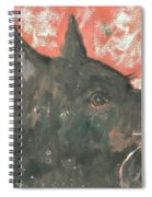 Adoring Eyes Spiral Notebook