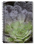 Adorned By Raindrops Spiral Notebook