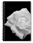 Adornment Spiral Notebook