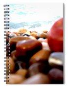 Adriatico Preistorico 2 Spiral Notebook