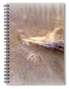Adrift Spiral Notebook