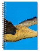 Adult Sandhill Crane Spiral Notebook
