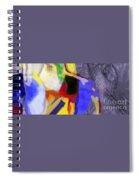 Benefit Of Concealment 1ab Spiral Notebook