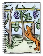 Aesop The Fox & The Grapes Spiral Notebook