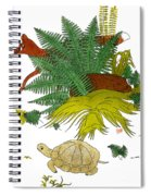 Aesop: Tortoise & The Hare Spiral Notebook