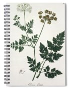 Aethusa Cynapium From Phytographie Spiral Notebook