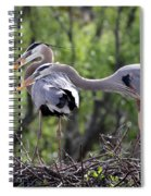 Affectionate Great Blue Heron Mates Spiral Notebook