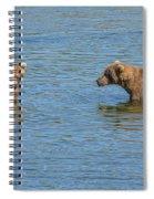 Affectionate Stare Spiral Notebook