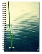 Affections Spiral Notebook