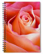African Beauty Spiral Notebook