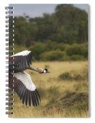 African Crowned Crane Spiral Notebook