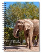 African Elephant 2 Spiral Notebook