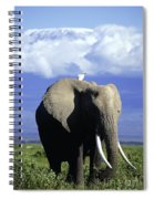 African Elephant Spiral Notebook