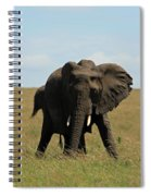 African Elephant Masai Mara Kenya Spiral Notebook