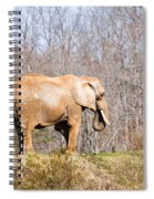 African Elephant On A Hill Spiral Notebook