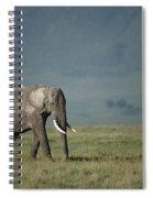 African Elephant Spiral Notebook