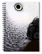African Gray Parrot Art - Seeing Is Believing Spiral Notebook