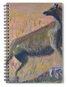 African Hyena Spiral Notebook