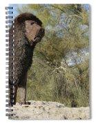 African Lion Sculpture Detail Spiral Notebook