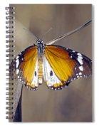 African Monarch Butterfly Spiral Notebook
