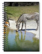 African Queen Spiral Notebook