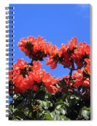 African Tulip Tree Spiral Notebook