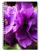 African Violet Spiral Notebook