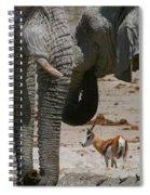 African Waterhole Spiral Notebook