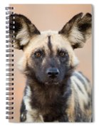African Wild Dog Spiral Notebook