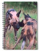 African Wild Dogs Spiral Notebook