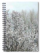 After A Light Snowfall Spiral Notebook