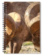 After Impact Spiral Notebook