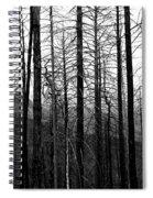 After The Fire Spiral Notebook