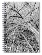 After The Ice Storm Spiral Notebook