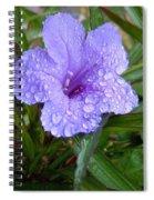 After The Rain #2 Spiral Notebook