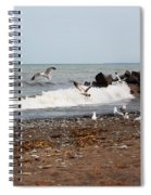 After The Spring Thaw Spiral Notebook