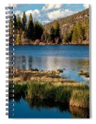 Afternoon At Sprague Lake Spiral Notebook
