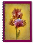 Afternoon Delight - 2 Spiral Notebook