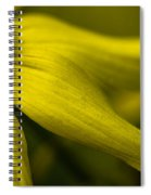 Afternoon Flower Spiral Notebook