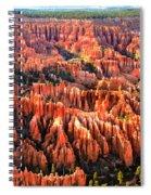 Afternoon Hoodoos Spiral Notebook